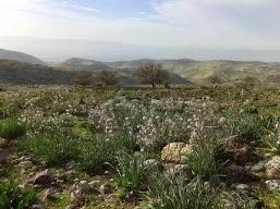 Pella hike